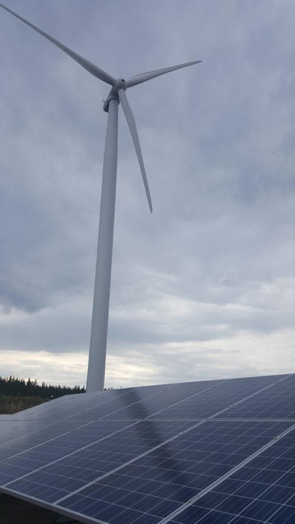 Haminan Mäkeänkankaan voimalasta saadaan sekä tuuli- että aurinkoenergia.